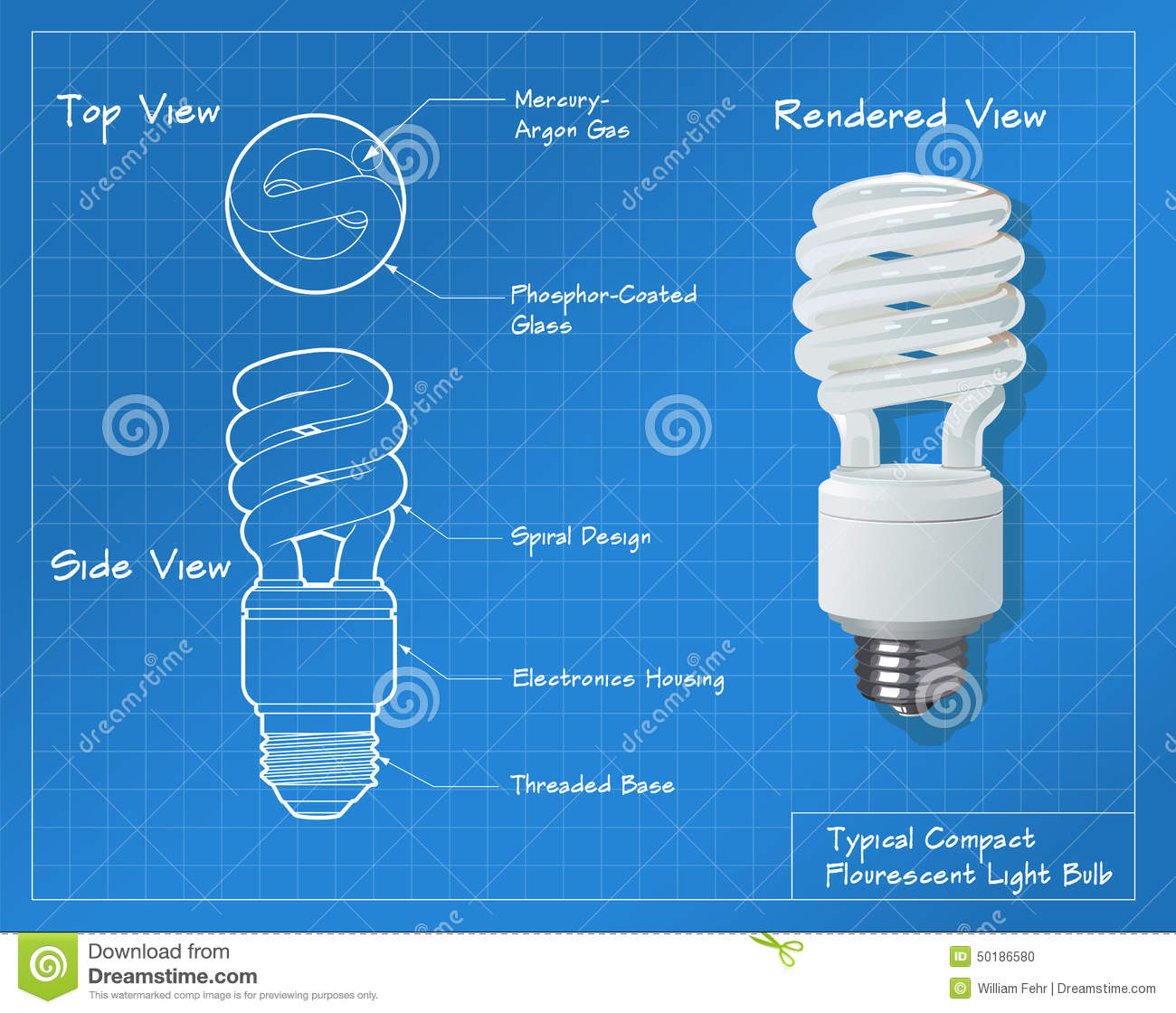 Fluorescent Light Bulb Diagram Drawing Trusted Schematics Compactfluorescentlightbulbsdiagram Compact Flourescent Stock Vector Illustration Of Wiring