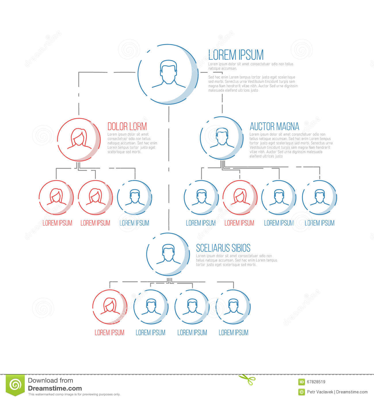 Company hierarchy diagram template stock vector illustration of download comp ccuart Image collections