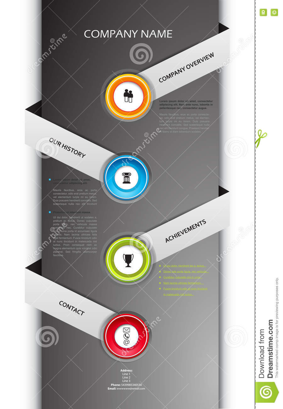 Company Infographic Overview Design Template Stock Vector