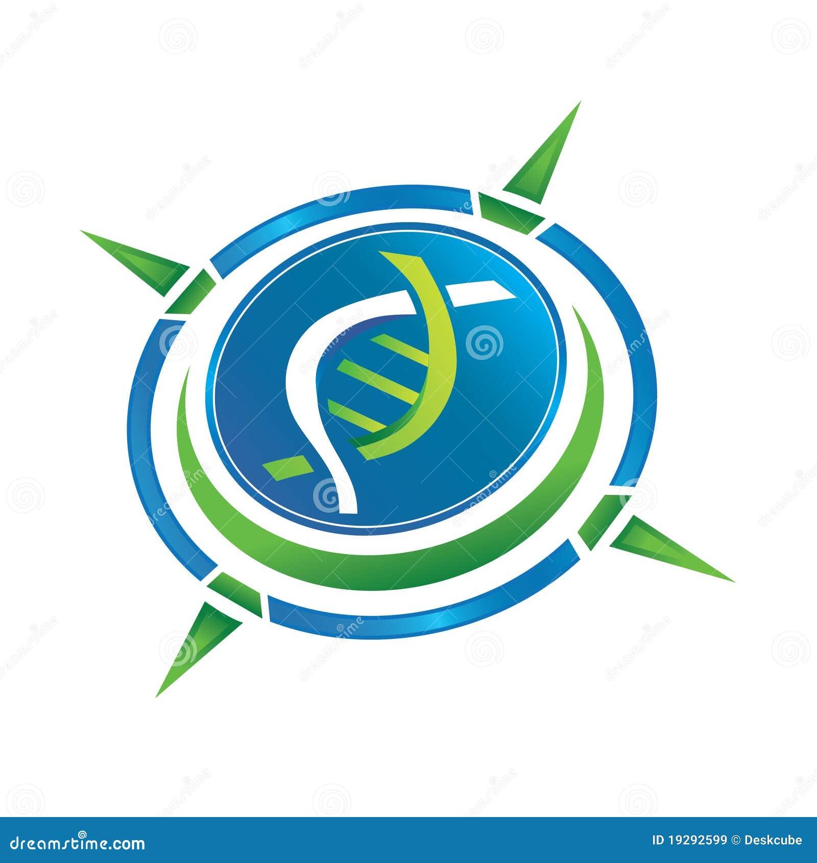 Pharmacy Logo Vector: Compass Logo Stock Vector . Image Of Chemistry, Illness