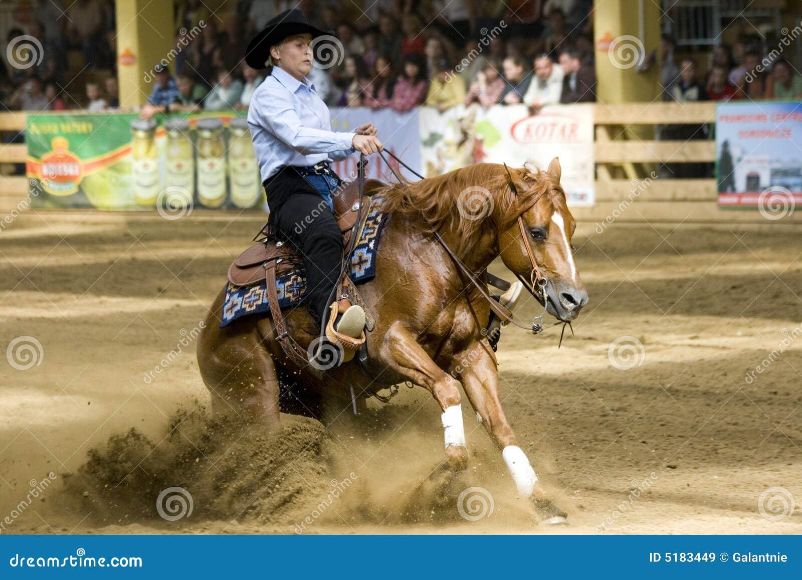 Comperition occidental d équitation