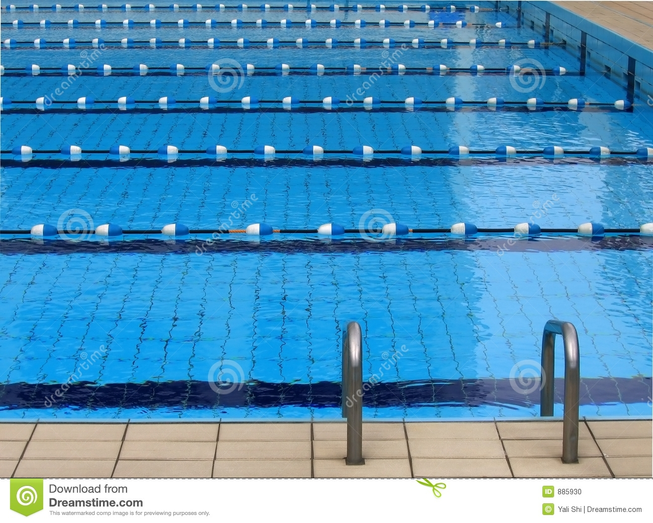 Competition Swimming Pool Stock Photo Image Of Cross Start 885930