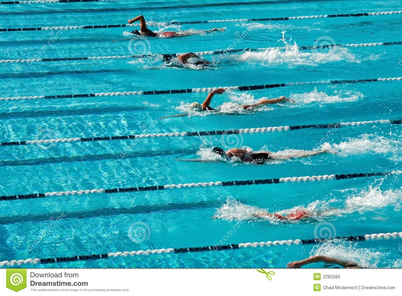 Download Competitive Swimming Stock Photo Image Of Olympics Butterfly