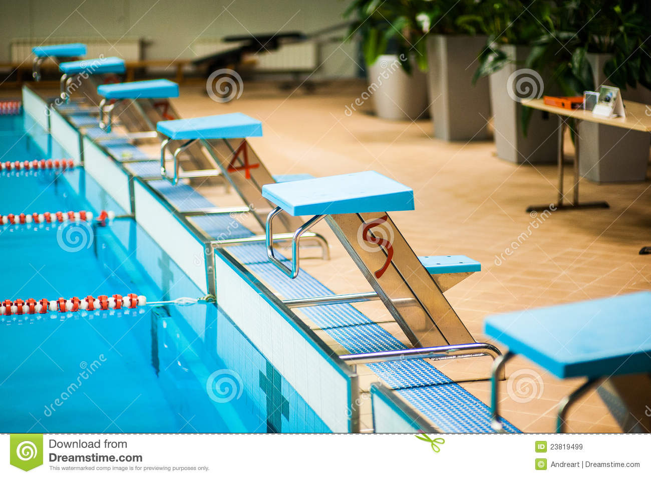 Competitive Swimming Pool Royalty Free Stock Images Image 23819499