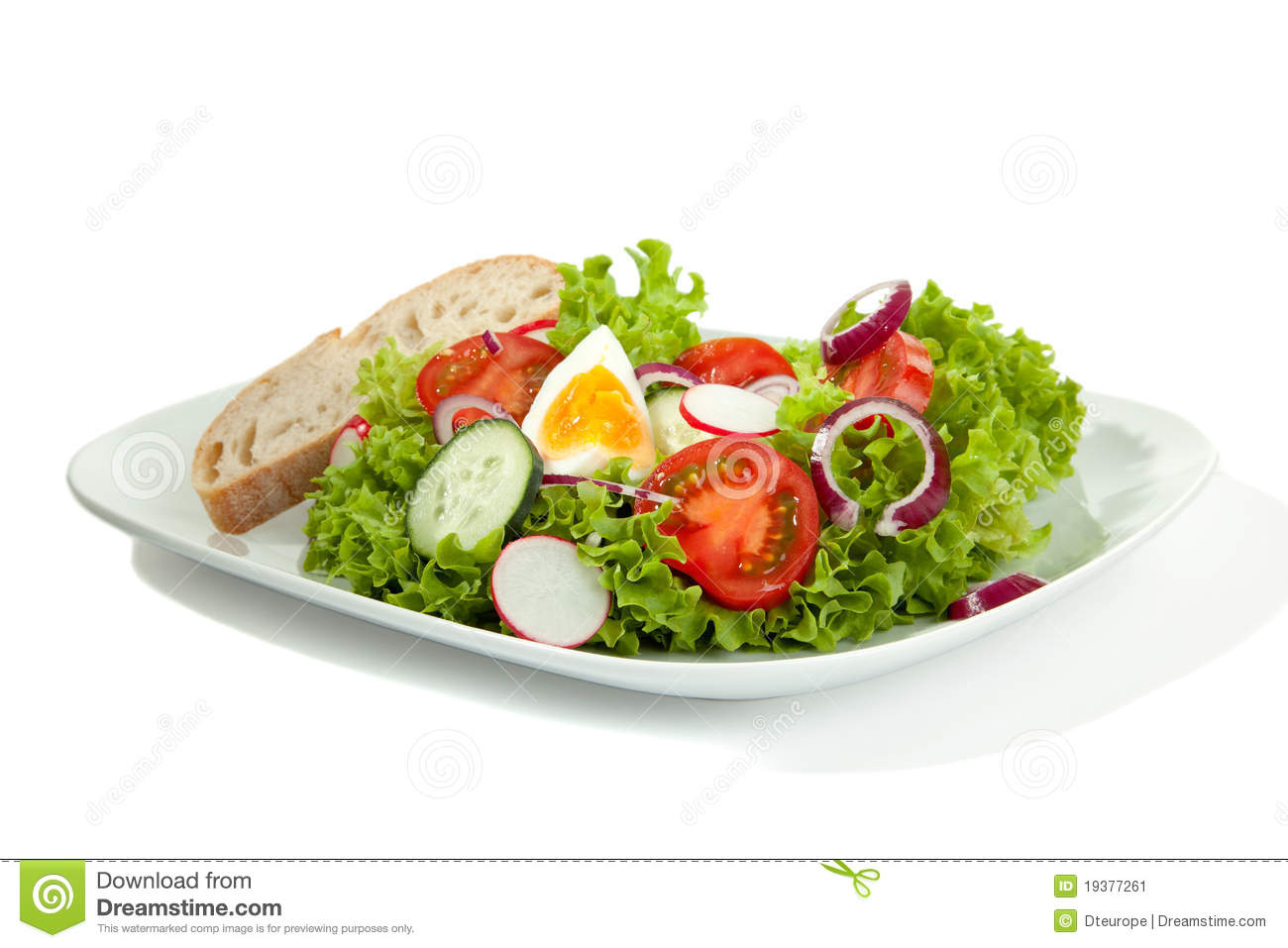 complete salad plate stock image  image  - complete salad plate stock image