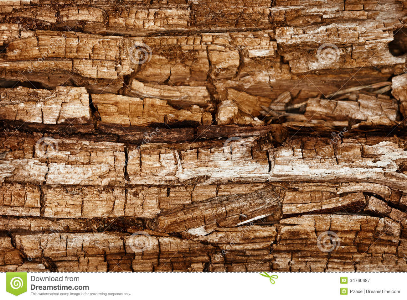 Completely Rotted Wood Royalty Free Stock Photography - Image ...: dreamstime.com/royalty-free-stock-photography-completely-rotted...