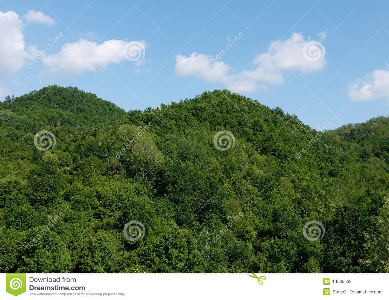 Completely Unspoilt Wooded Hillside Royalty Free Stock Images - Image ...: dreamstime.com/royalty-free-stock-images-completely-unspoilt-wooded...