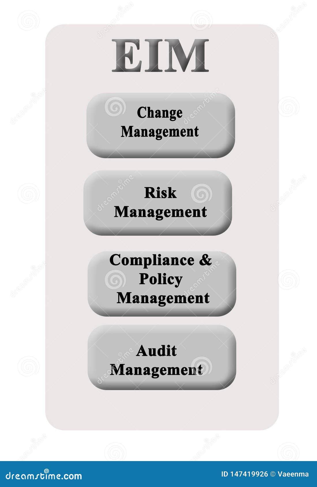 Componentes da auditoria de EIM