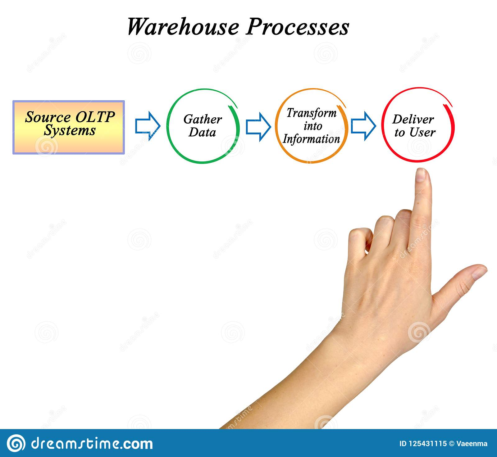 Warehouse information processes