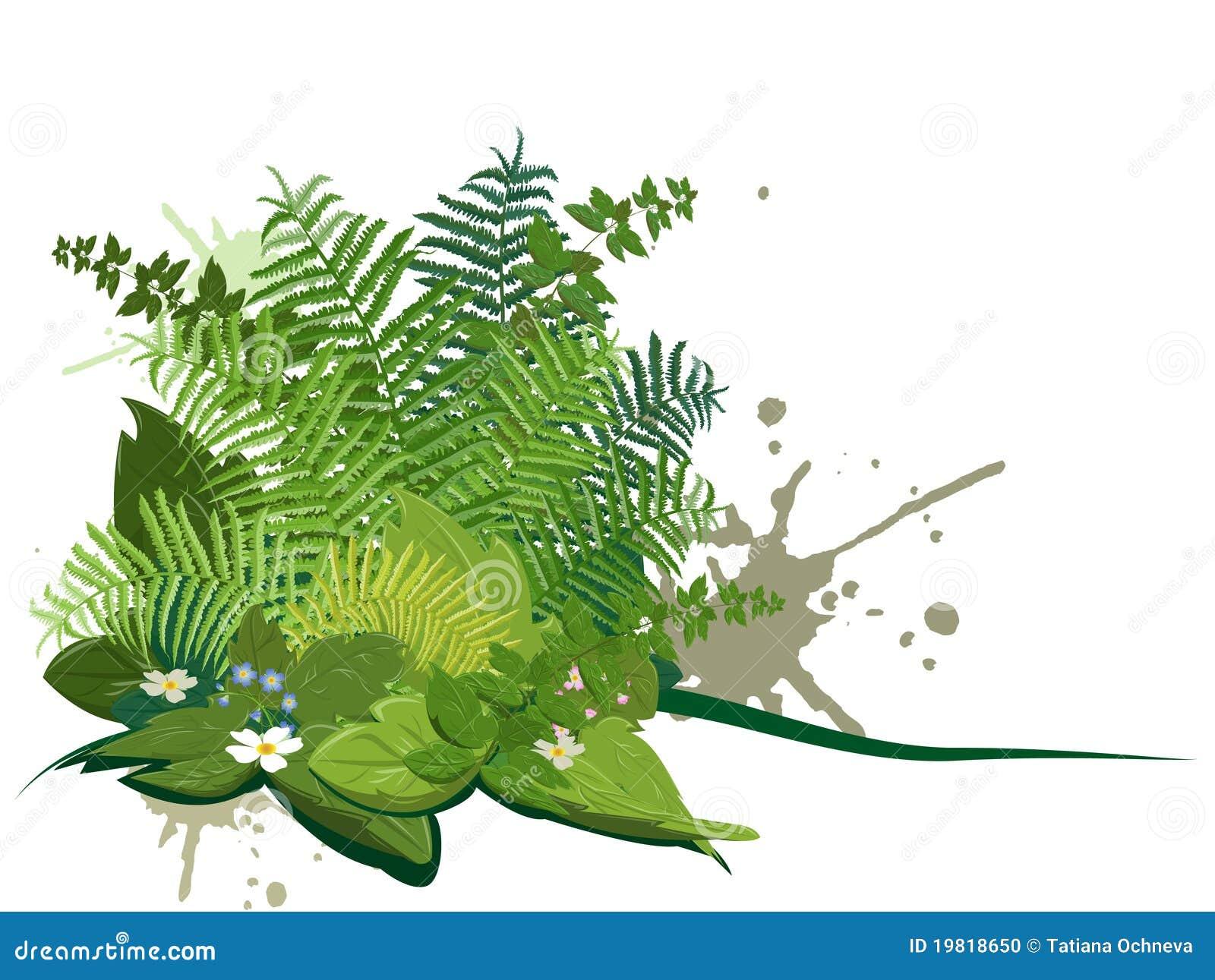 Composé des centrales de forêt
