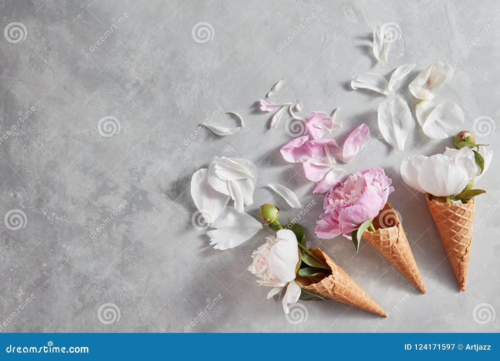 Composição criativa das flores delicadas em cones de uma bolacha com pétalas em uma tabela de pedra cinzenta Configuração lisa