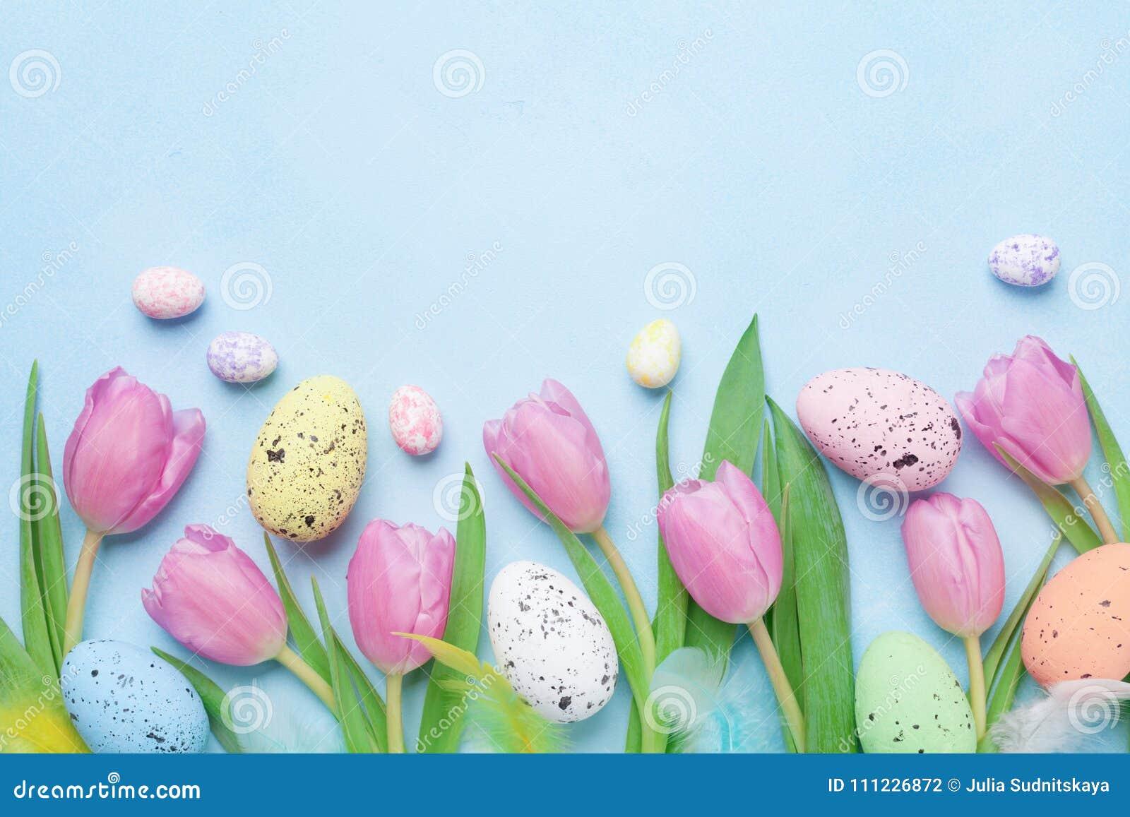 Composição da mola com tulipa cor-de-rosa, os ovos coloridos e as penas na opinião de tampo da mesa azul Cartão de easter feliz