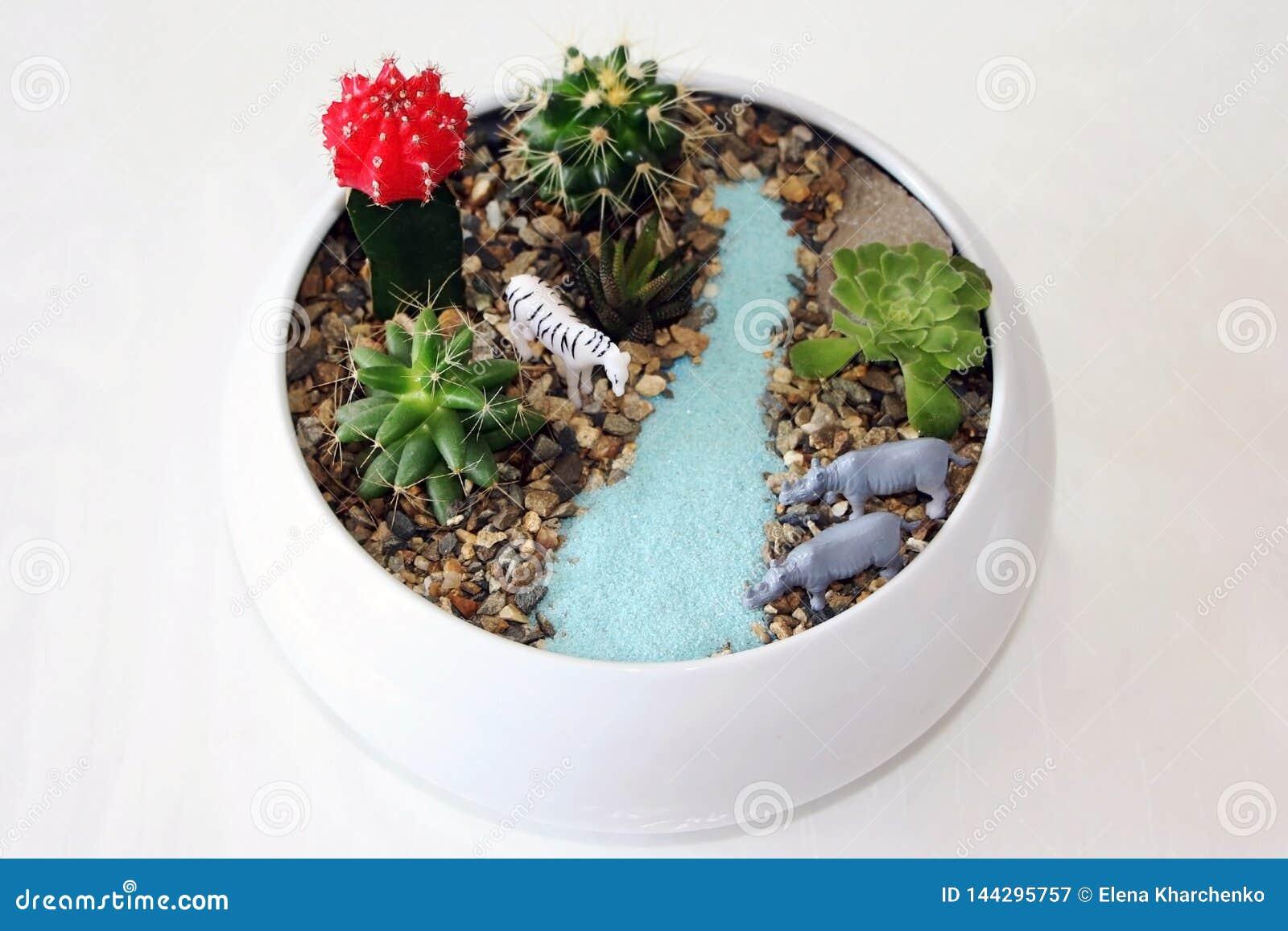 Composição das plantas carnudas com animais do brinquedo e a areia artificial