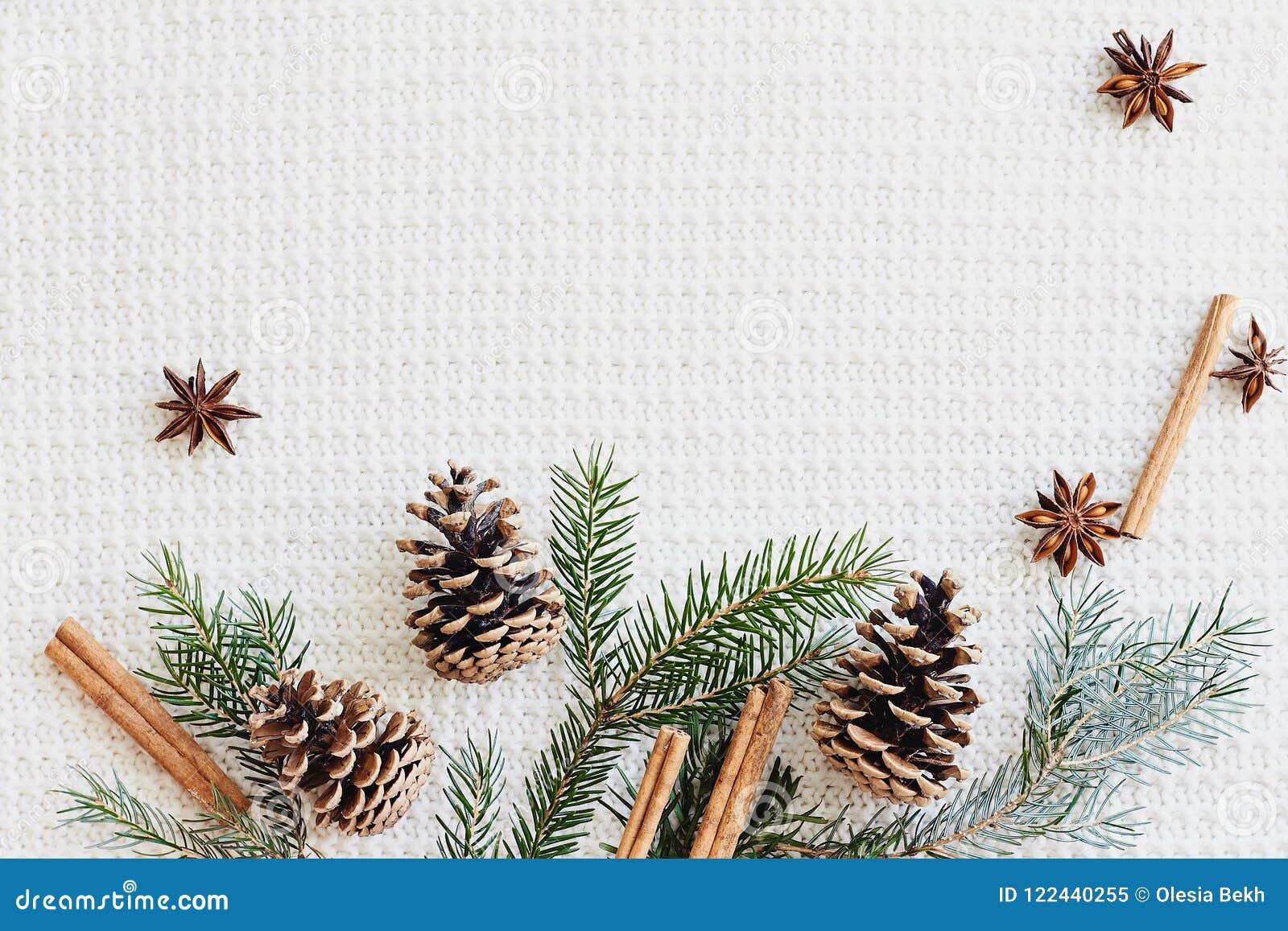 Composição do Natal e do ano novo O abeto ramifica com cones, anis de estrela, canela no fundo branco feito malha