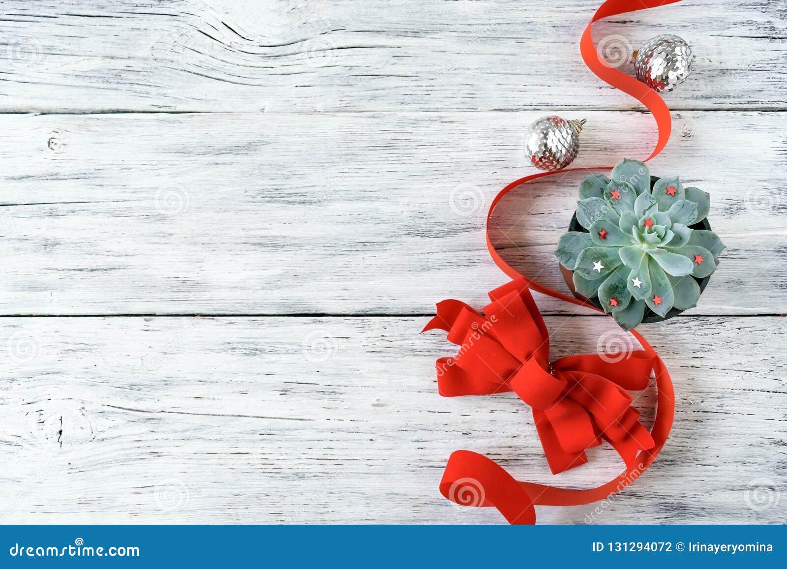 Composição do Natal, modelo com a planta suculento do aloés verde do cacto, fita vermelha, curva e ornamento de prata do Natal