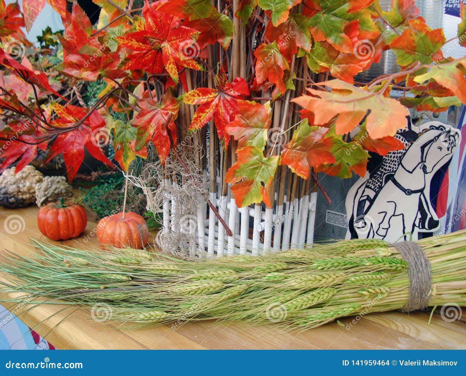 Composição do outono com folhas de bordo e as abóboras vermelho-verdes