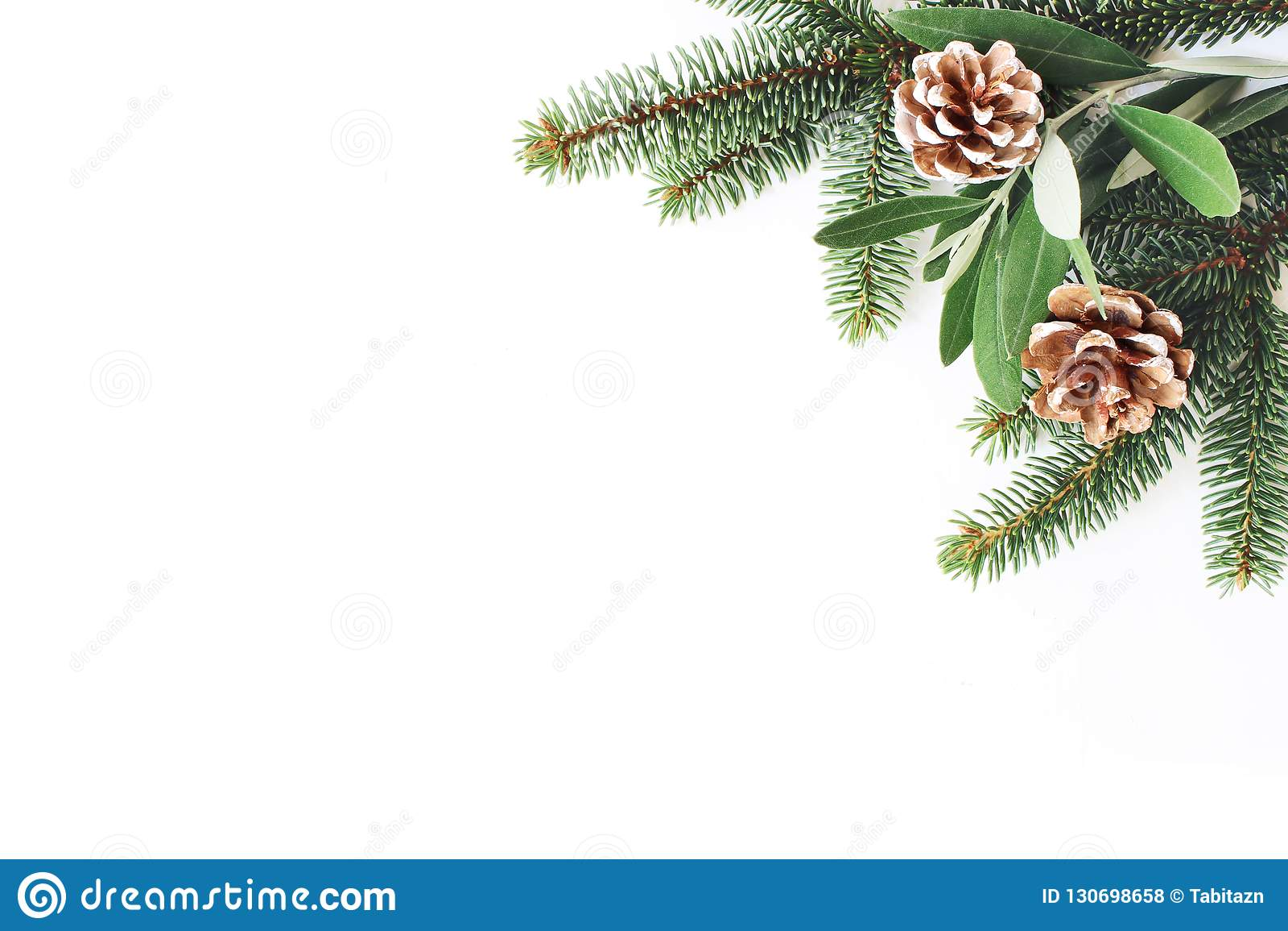 Composición común diseñada festiva de la Navidad Esquina decorativa Conos del pino, hojas del abeto y del olivo y blanco de las r