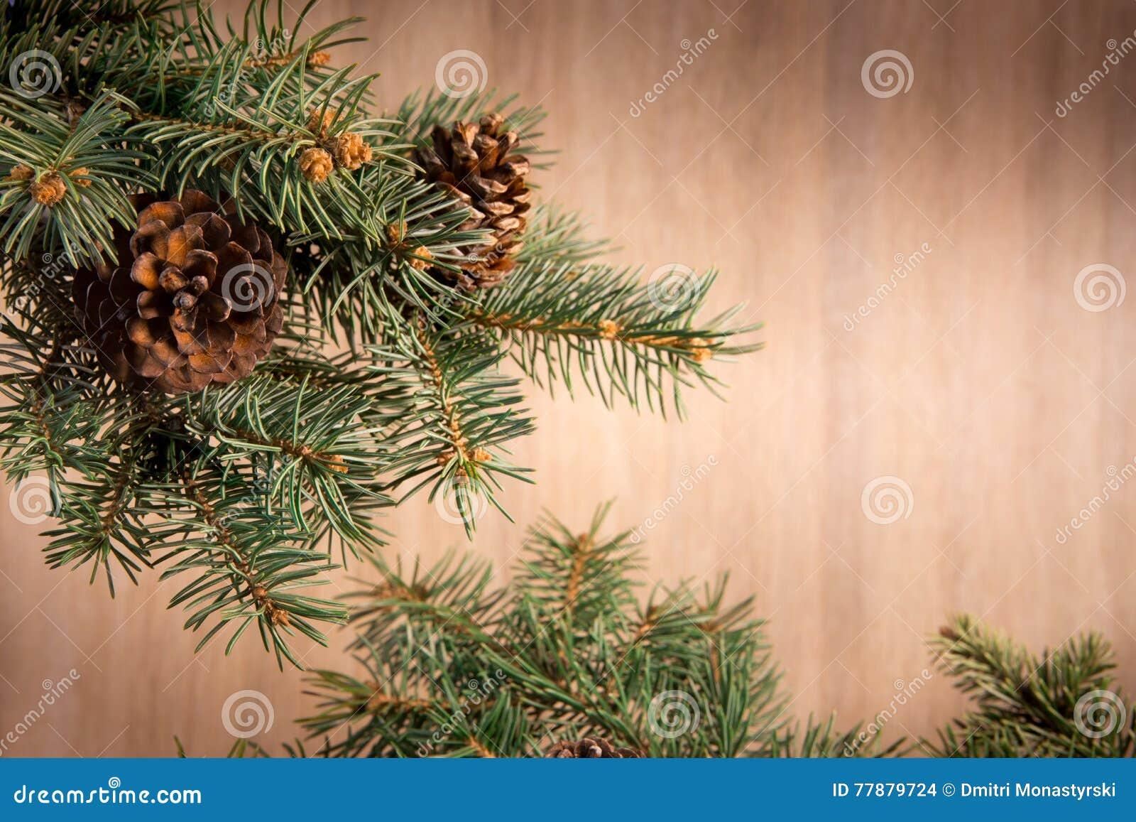 Composición Con Bolas De La Decoración Del árbol De Navidad Y De La Navidad, Foto de archivo