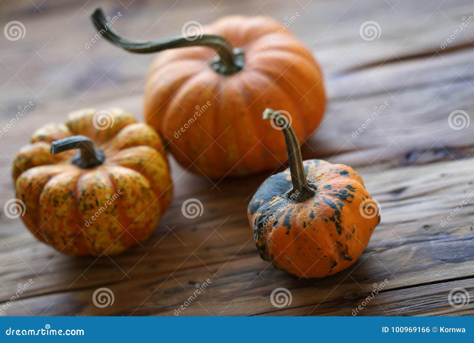 Composición con las calabazas de Halloween
