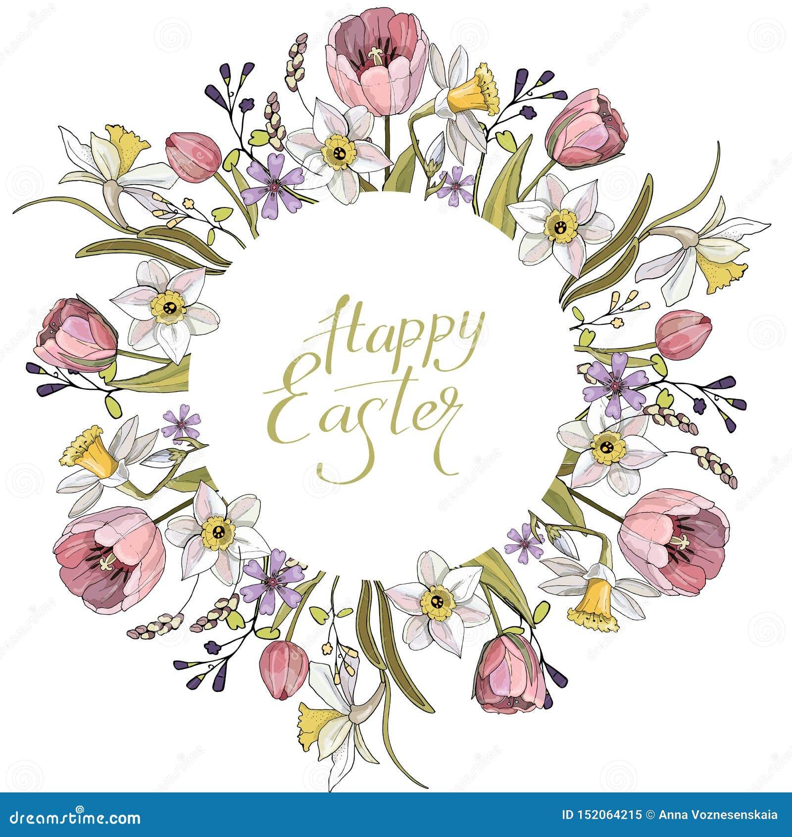Composición de la primavera con el círculo y los elementos románticos florales Tulipanes y narcisos en el fondo blanco