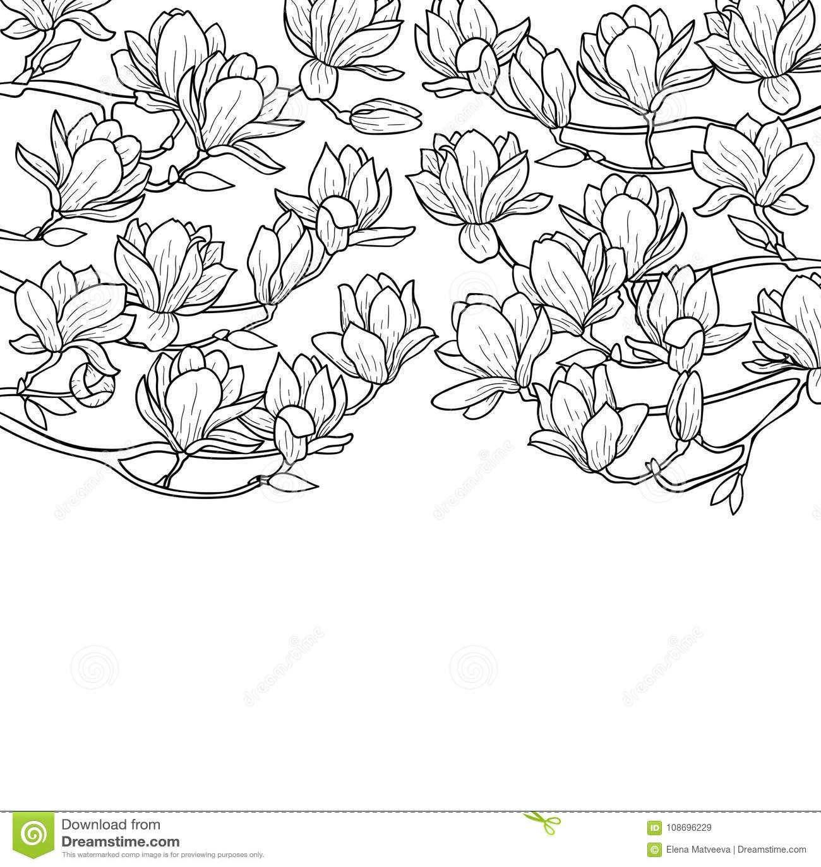 Composición de la primavera de la magnolia