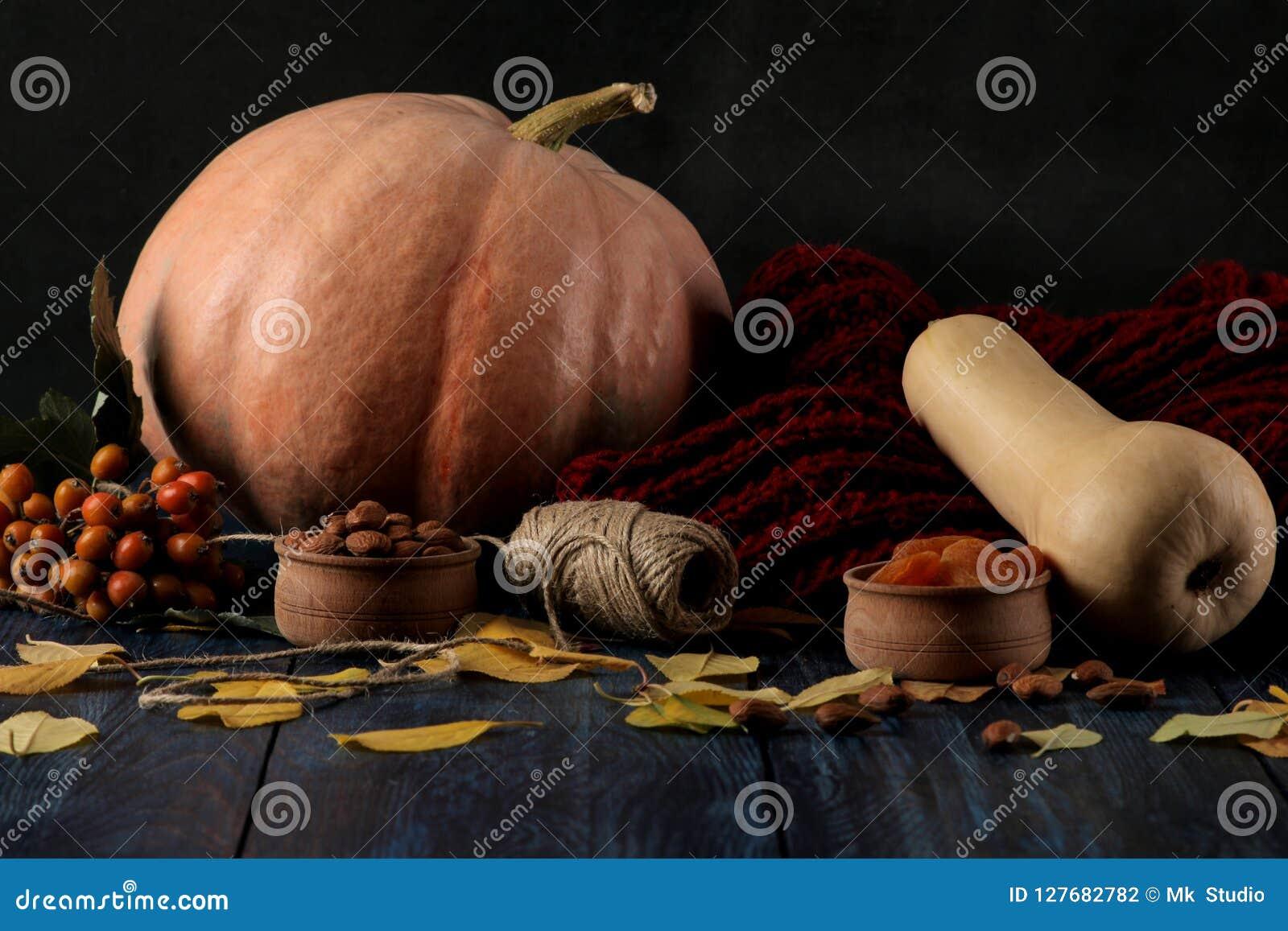 Composición del otoño con las nueces de la calabaza y bayas y una bufanda caliente en una tabla azul y un fondo negro