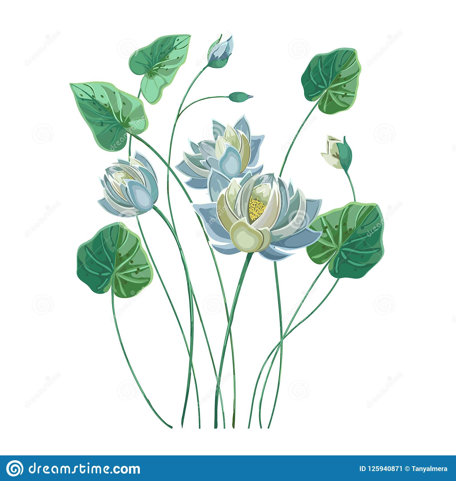Composition Of Blue Lotus Flower With Green Leaves Stock Vector