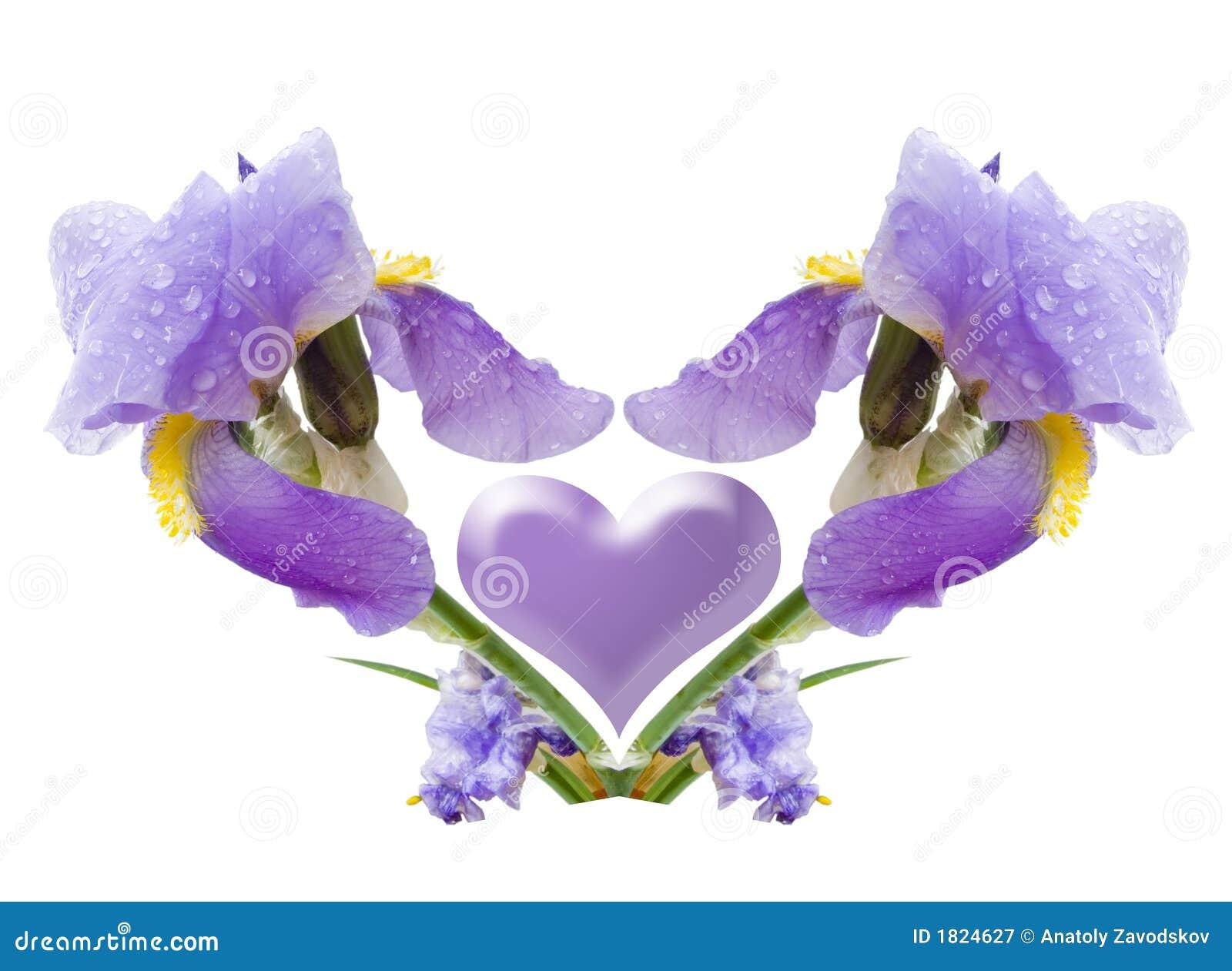 Composition D Une Fleur Image Stock Image Du Ruches Initial 1824627