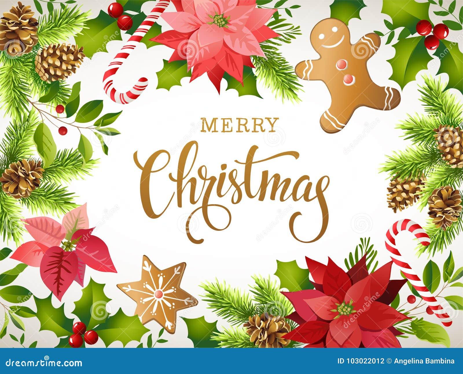 Composition de conception de Noël de poinsettia, de branches de sapin, de cônes, de pain d épice, de canne de sucrerie, de houx e