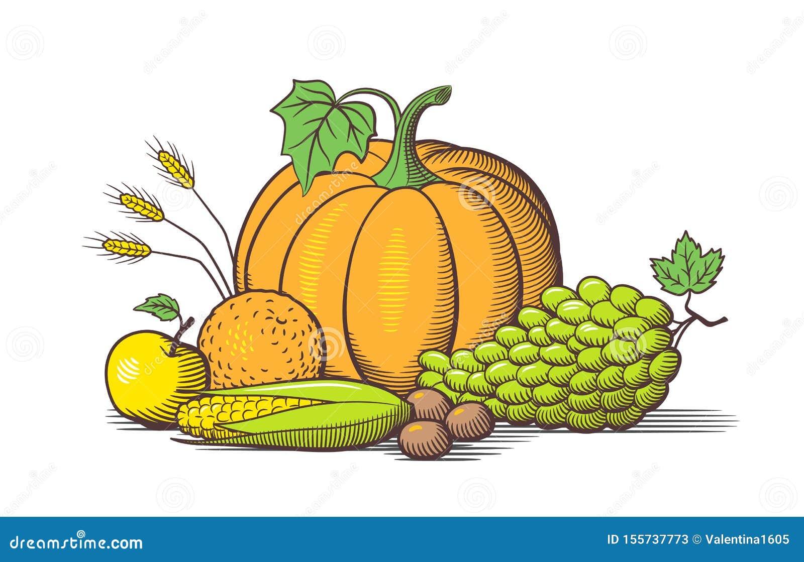 Composition des fruits et l?gumes Vecteur de style rétro coloré