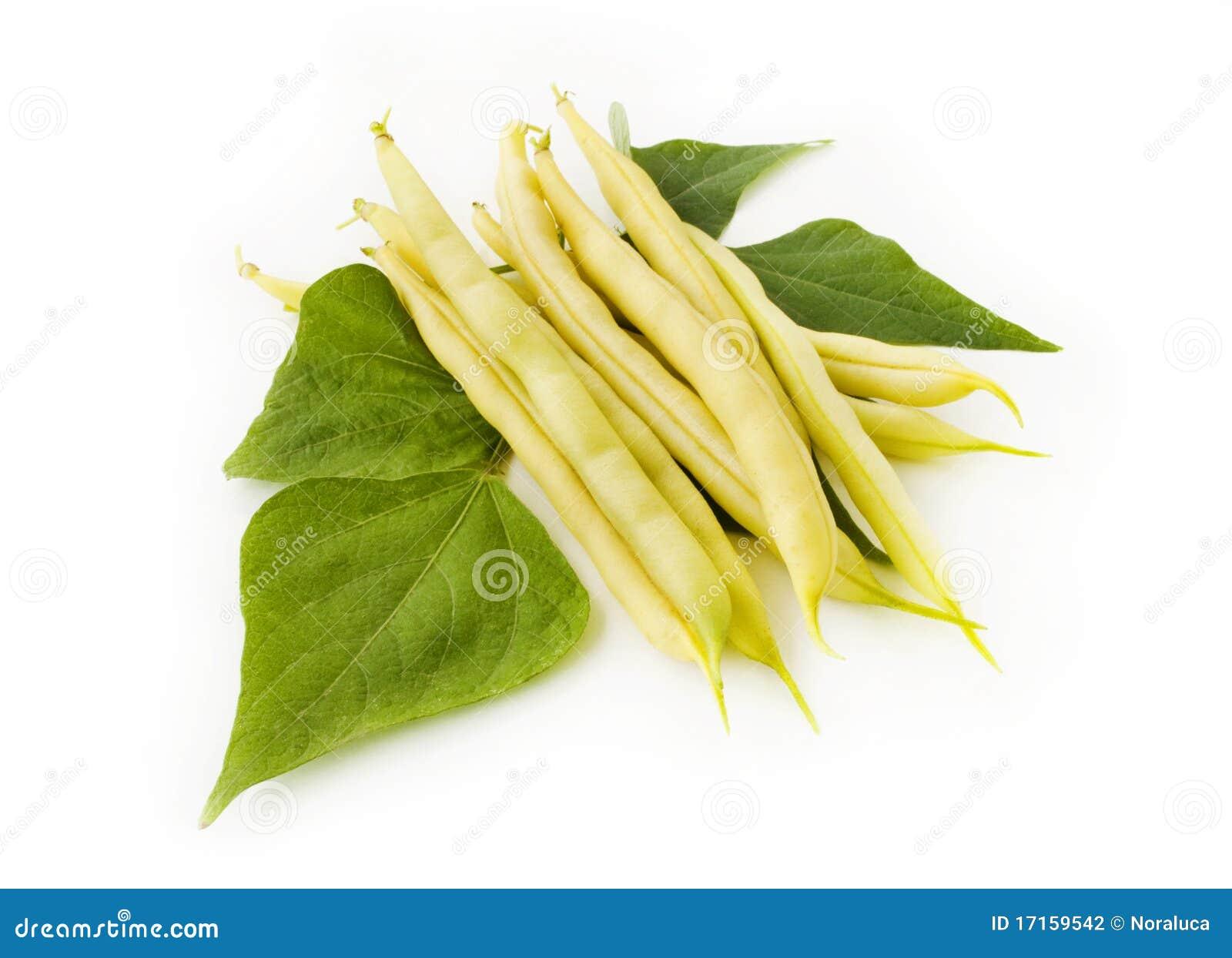Composition des haricots jaunes avec des lames