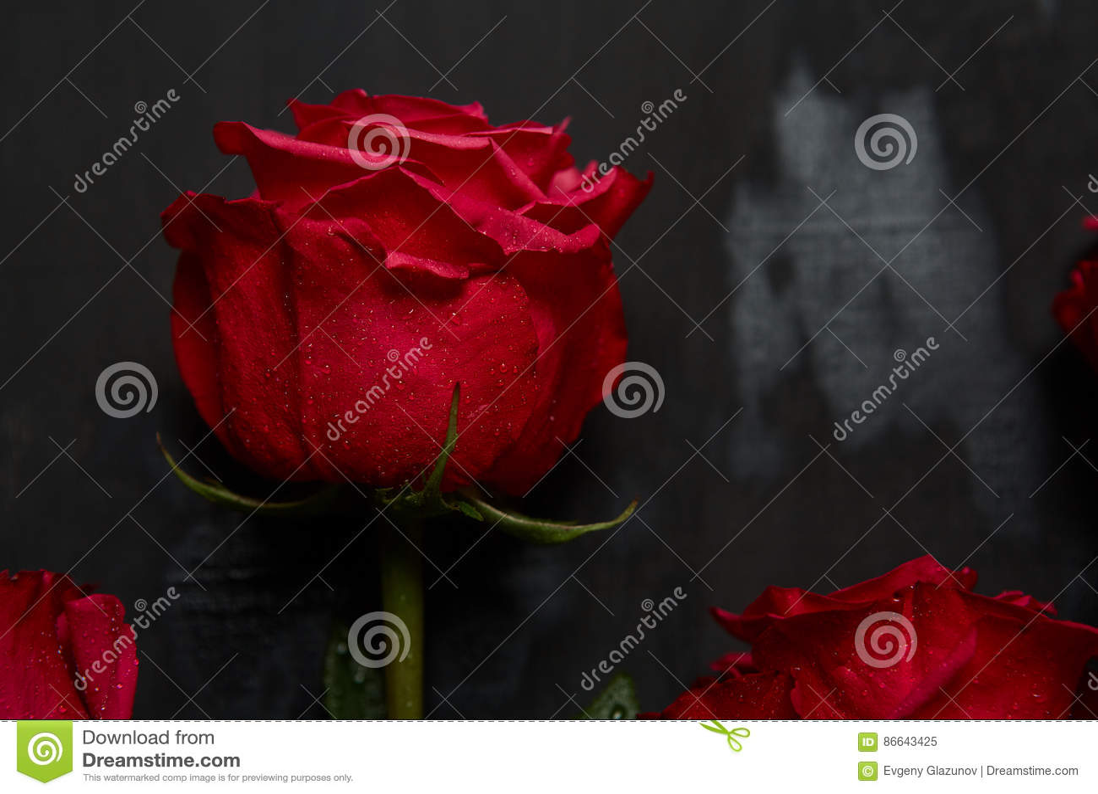 Composition Des Roses Rouges Sur Le Fond Gris Fonce Decor Chic