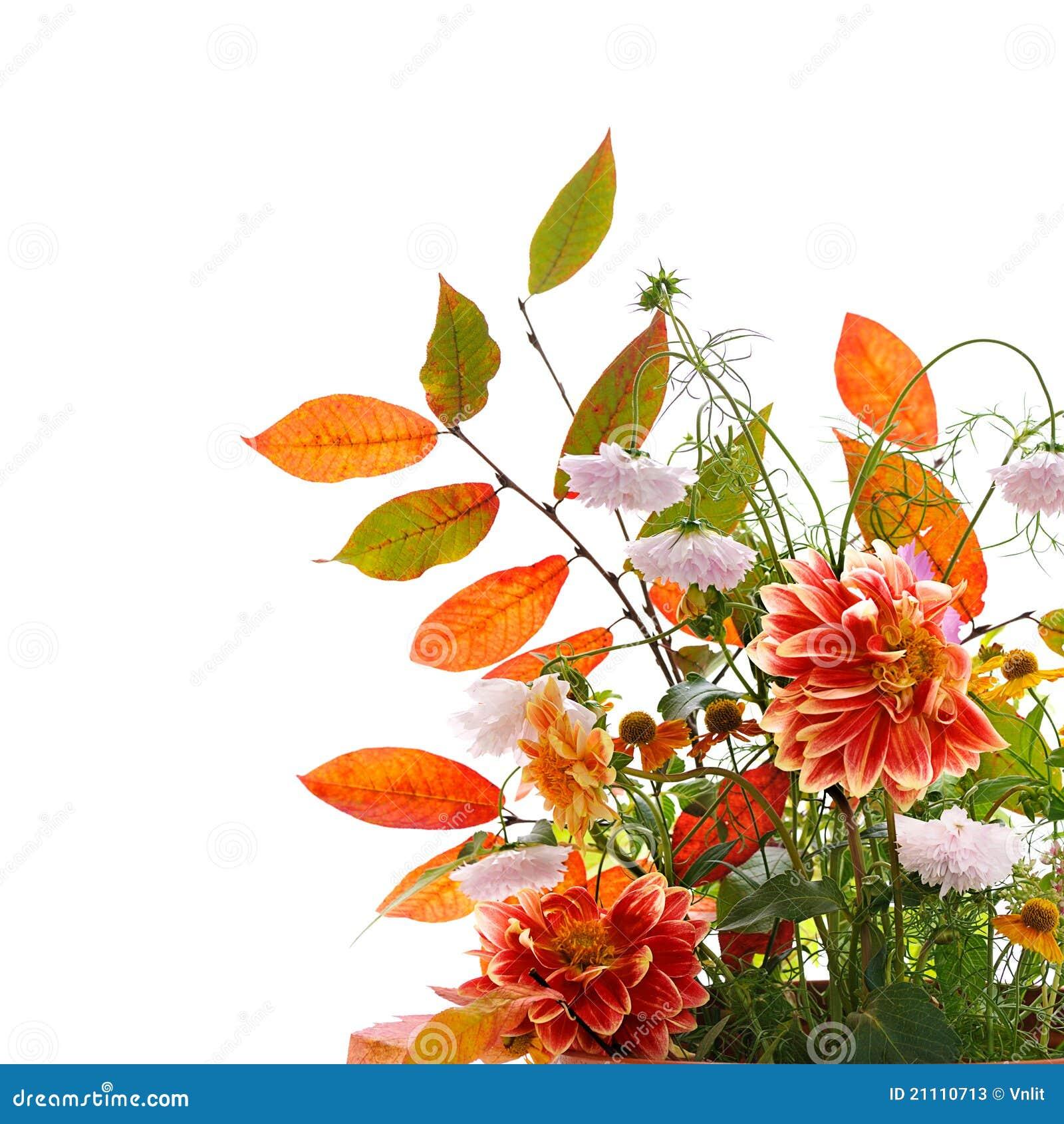 composition florale d 39 automne photos stock image 21110713. Black Bedroom Furniture Sets. Home Design Ideas