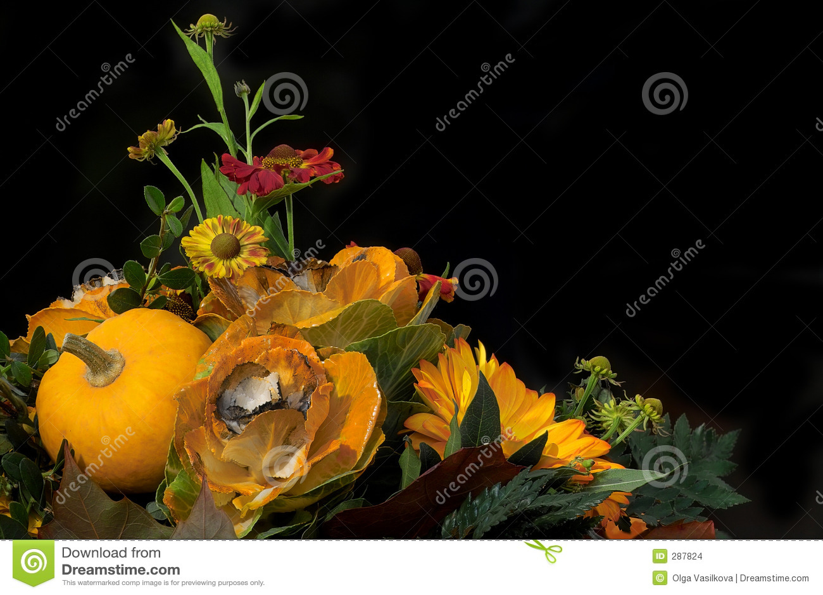 composition florale d 39 automne images stock image 287824. Black Bedroom Furniture Sets. Home Design Ideas