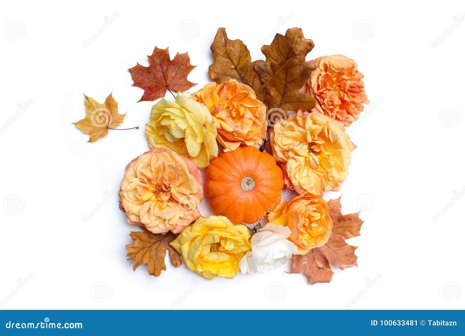 composition florale d automne stock images 504 photos. Black Bedroom Furniture Sets. Home Design Ideas