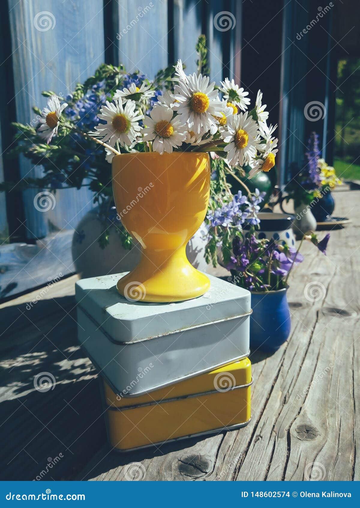 Véranda De Jardin Extérieur composition florale en véranda ensoleillée de jardin photo