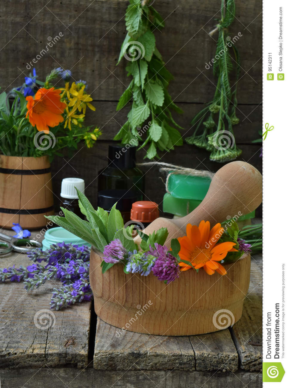 Composition of fresh herbs and flower used in natural alternative medicine or cosmetology for preparation of cosmetics, cream, soa