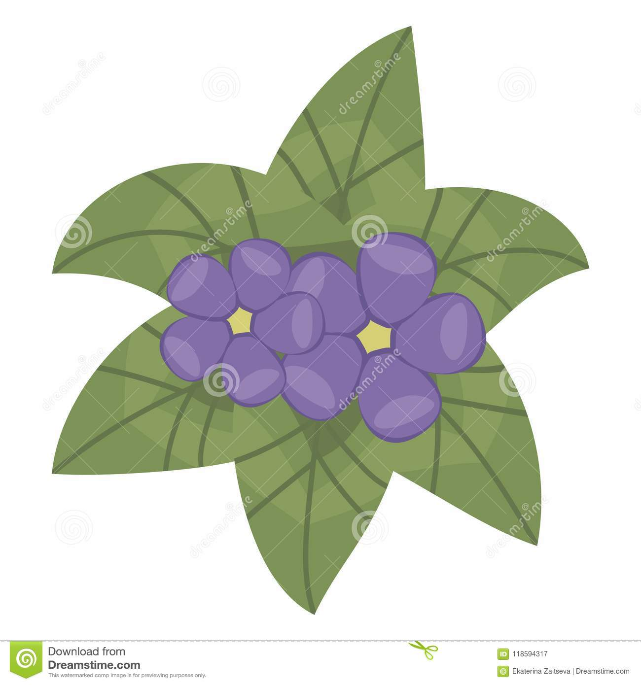 Composition of green shiny bright leaves and small purple flowers composition of green shiny bright leaves and small purple flowers violets with yellow center object isolated mightylinksfo
