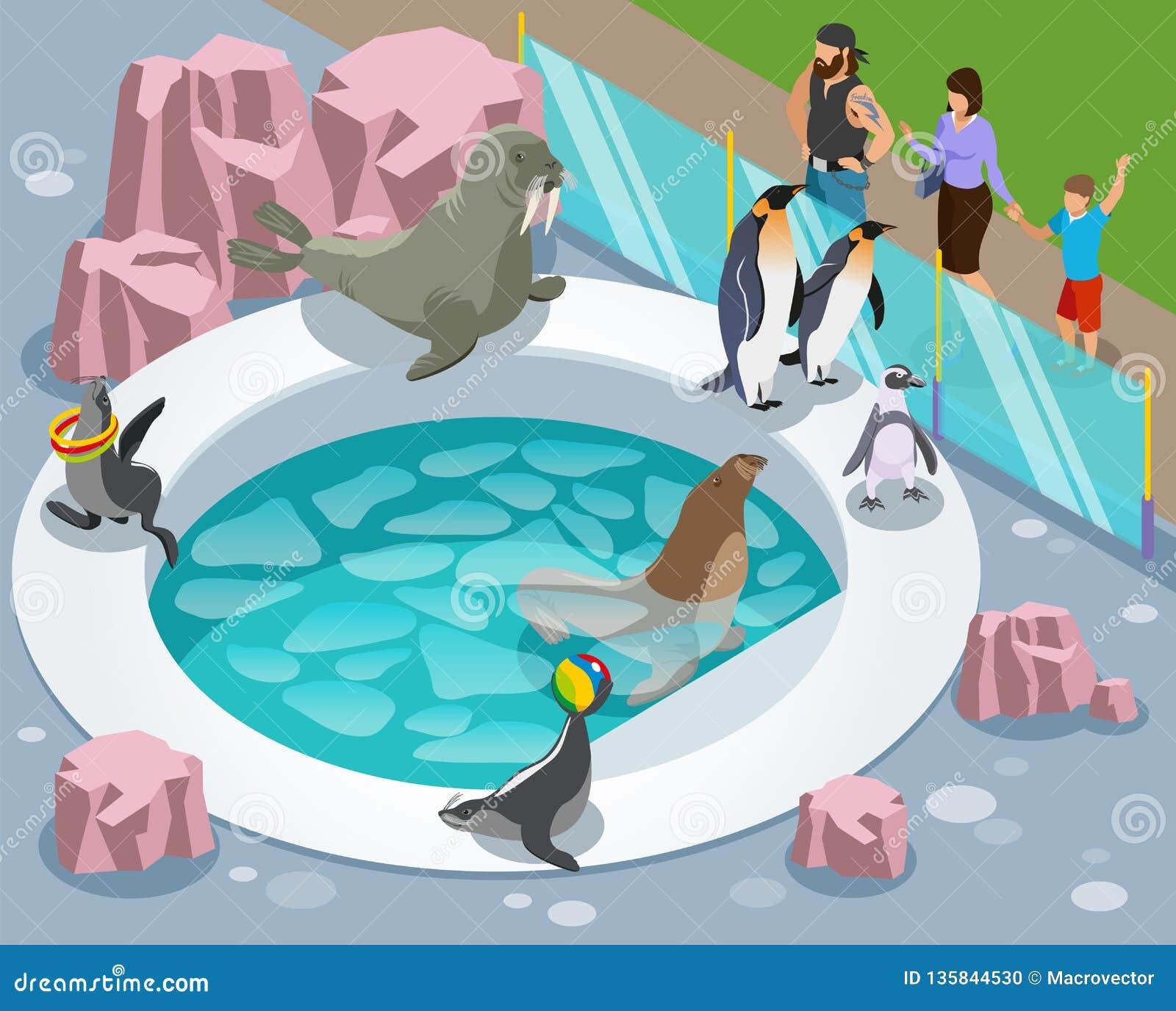 Composition isométrique en parc animalier