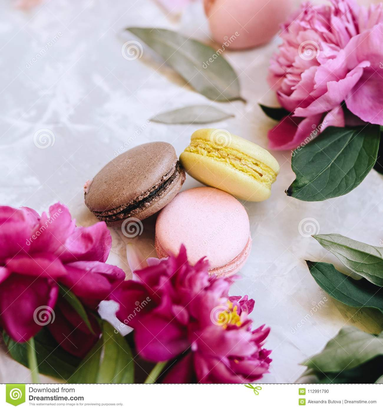A composition of three multicolored macaroons and pink peony flowers. Close-up on a light background