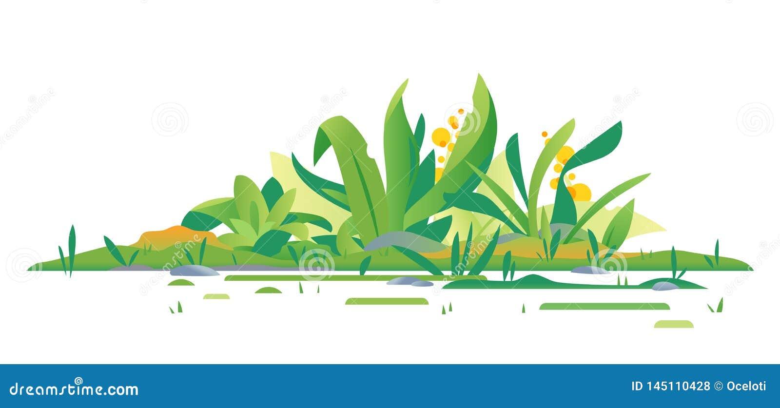 Composition verte en usines de jungle d isolement