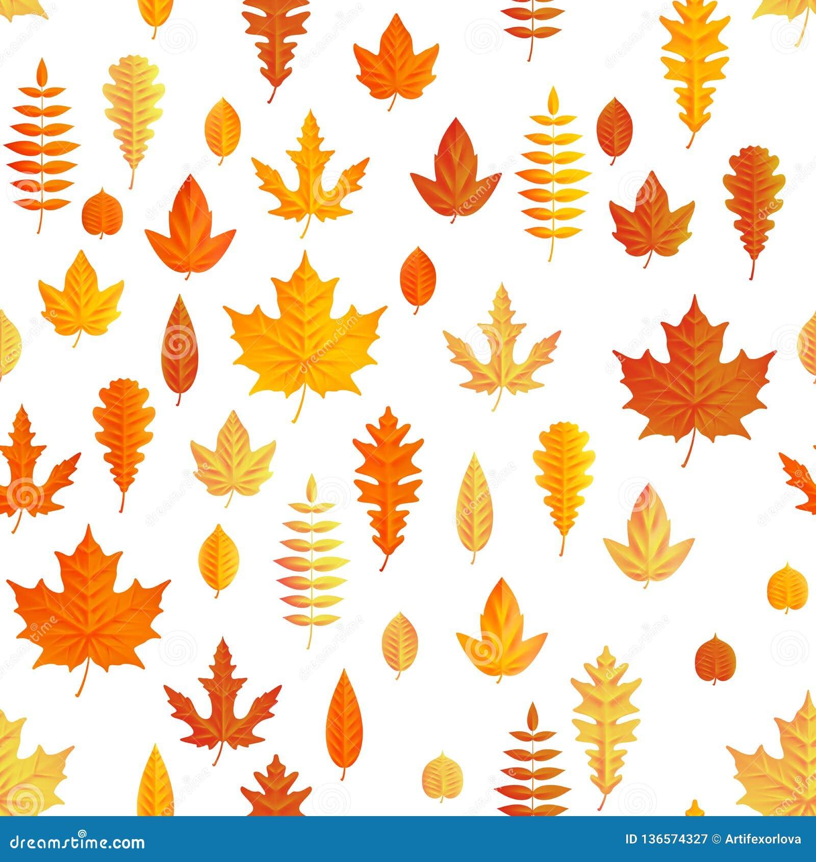 Composizione in autunno Modello senza cuciture delle foglie di acero di autunno ENV 10