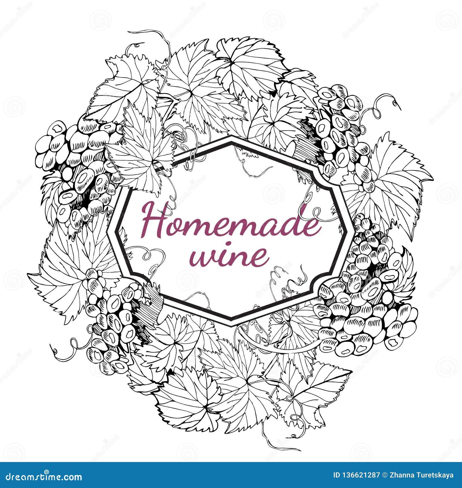 Composizione del cerchio del telaio dei rami dell uva Bacche dell uva con le foglie Schizzo disegnato a mano monocromatico i