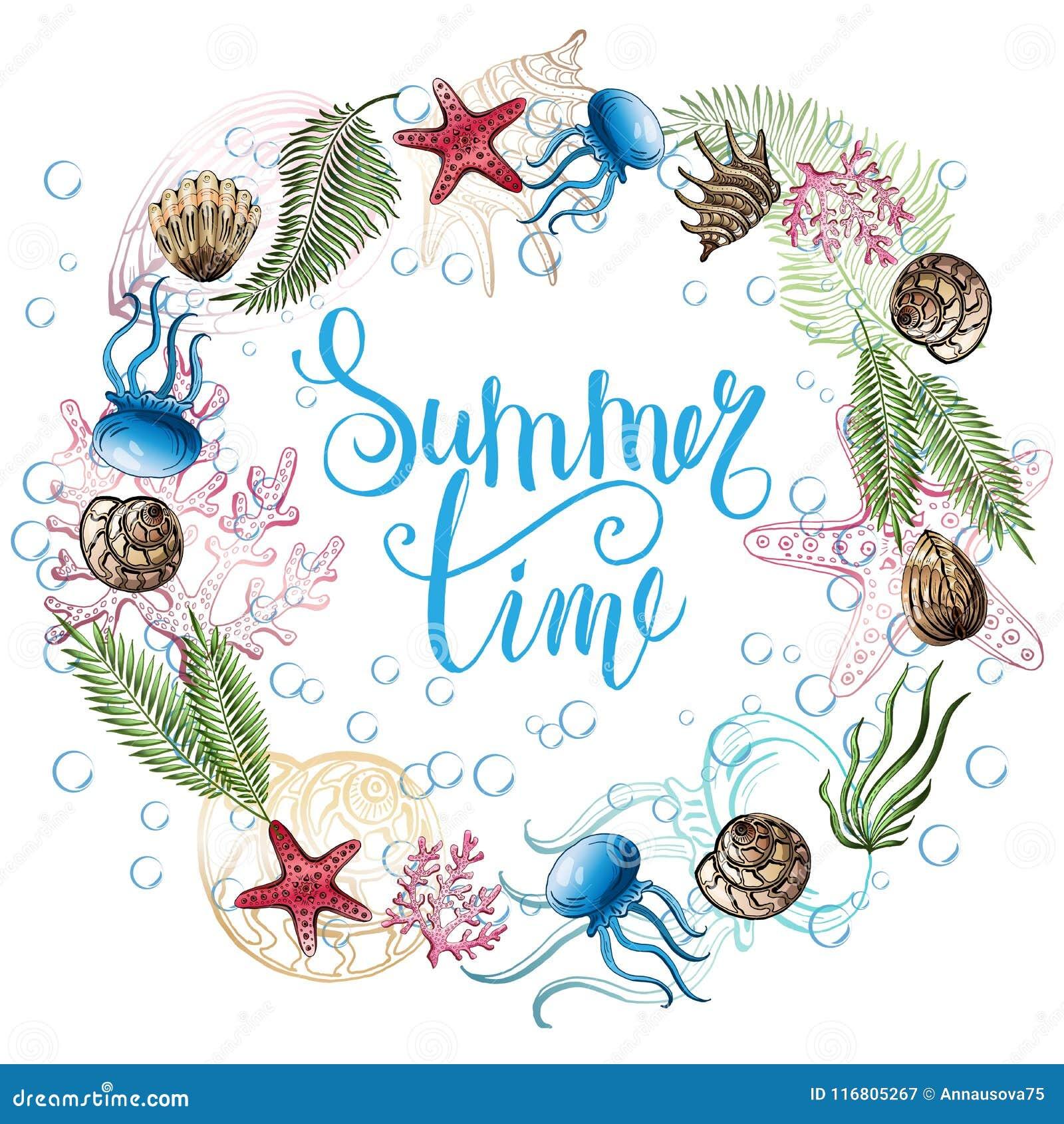Composizione delle conchiglie, stelle marine, meduse Mondo subacqueo Priorità bassa del mare
