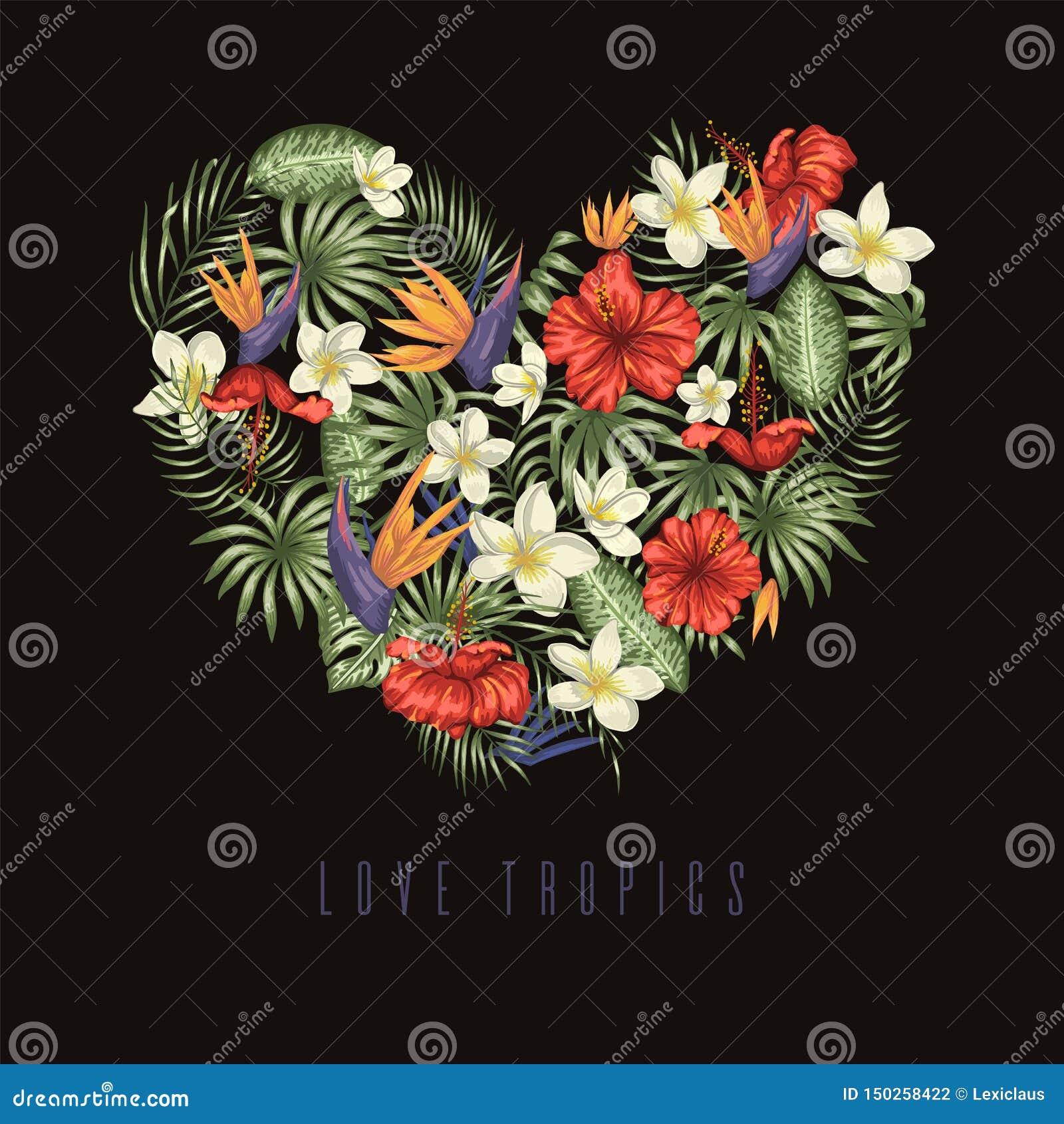 Composizione di vettore delle foglie tropicali verdi con la plumeria, la strelizia ed i fiori dell ibisco