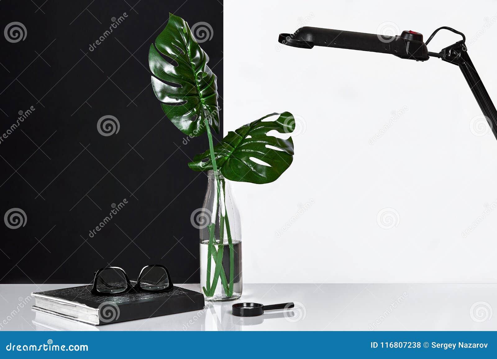 Composizione Foglie verdi in bottiglia con il blocco note su fondo bianco e nero Vista frontale, spazio della copia