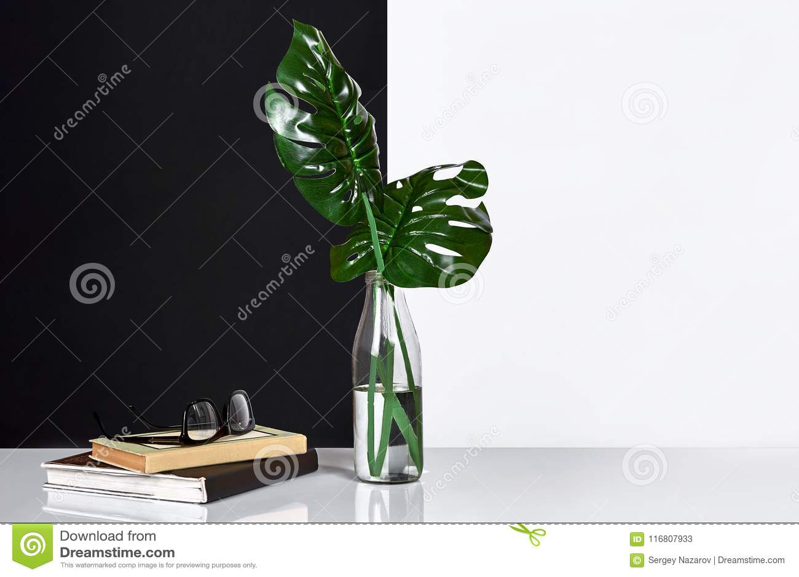 Composizione Foglie verdi in bottiglia con un libro e un blocco note per le note su fondo bianco e nero Vista frontale, copia