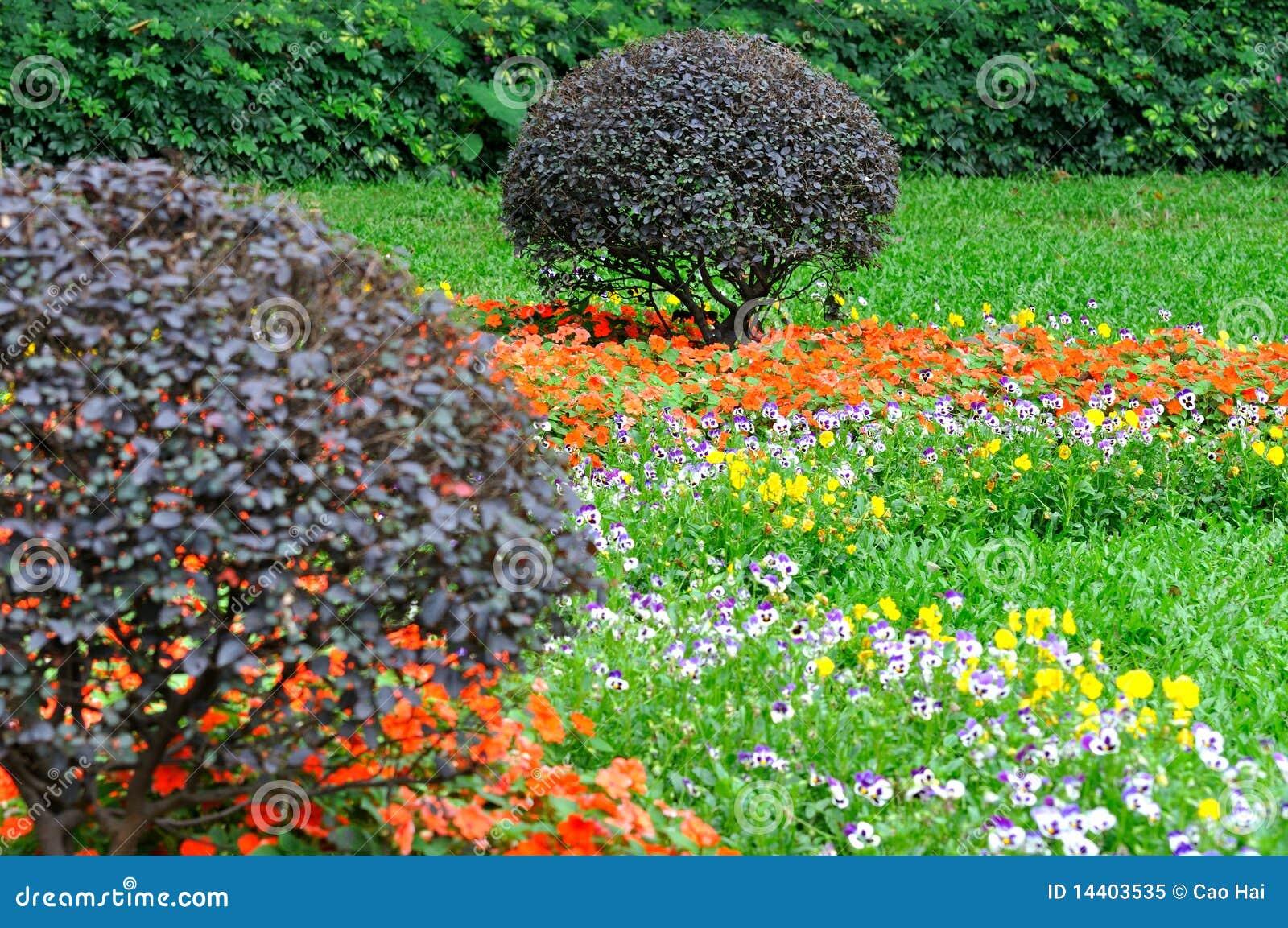 Composizione nel giardino cespuglio e mazzo di fiori for Giardino fiori