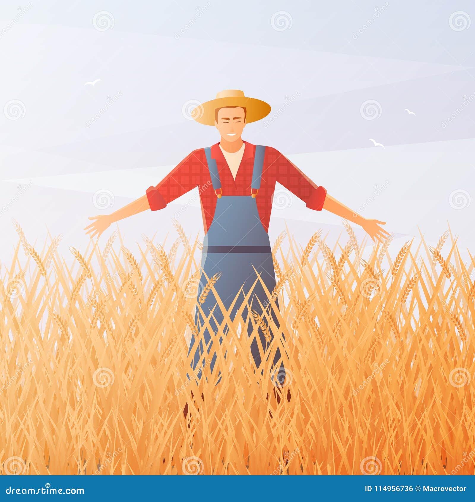Composizione piana in And Crop Harvest dell agricoltore