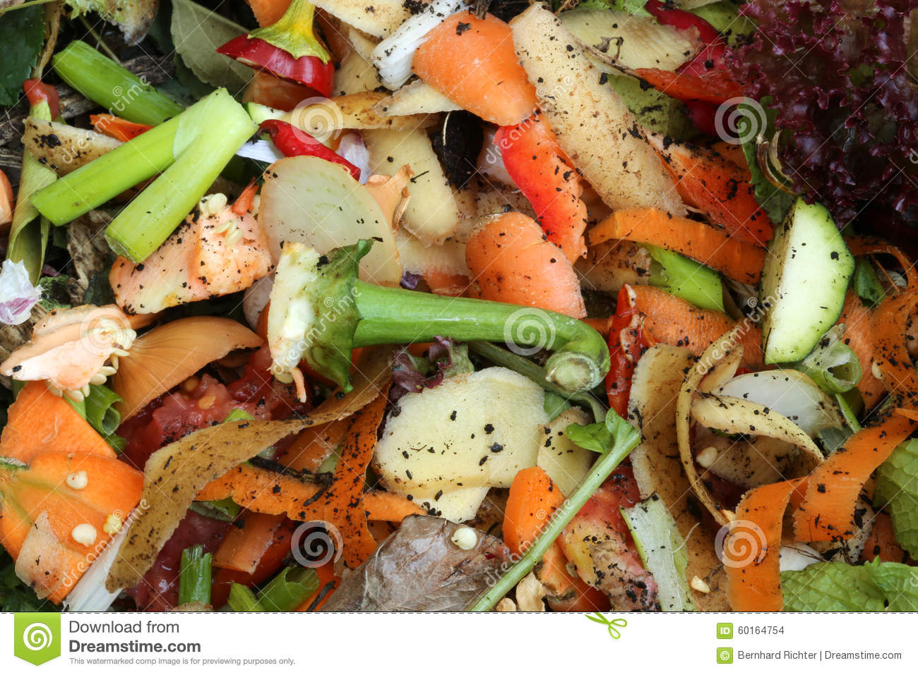 Compost Stock Photo Image Of Environmental Container